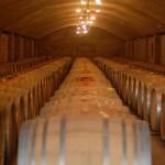 El_camino_cellar