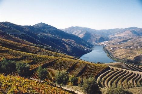 dolina_douro