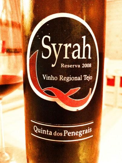 Quinta dos Penegrais Syrah Reserva 2008 Vinho Regional Tejo