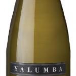 Yalumba Y Riesling 2007